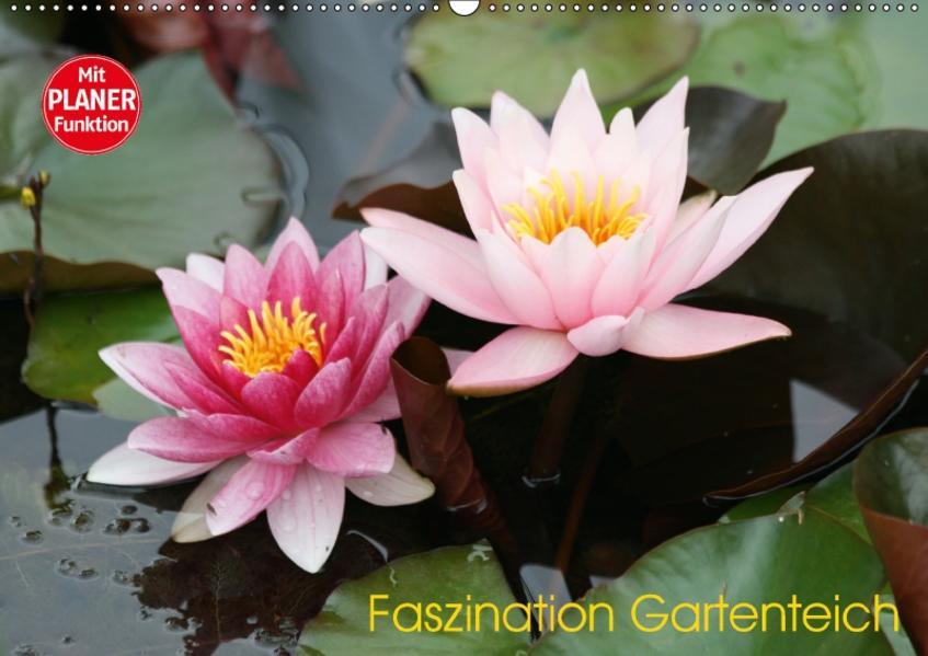 Faszination Gartenteich (Wandkalender 2017 DIN A2 quer) - Coverbild