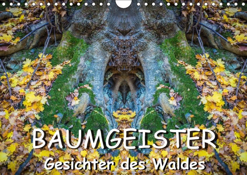 Baumgeister, Gesichter des Waldes (Wandkalender 2017 DIN A4 quer) - Coverbild