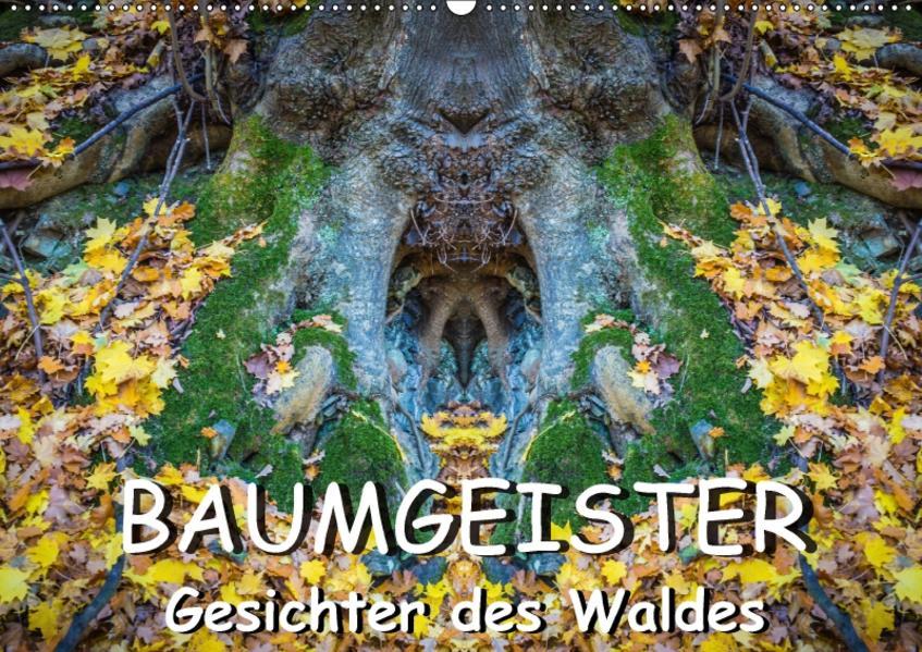 Baumgeister, Gesichter des Waldes (Wandkalender 2017 DIN A2 quer) - Coverbild