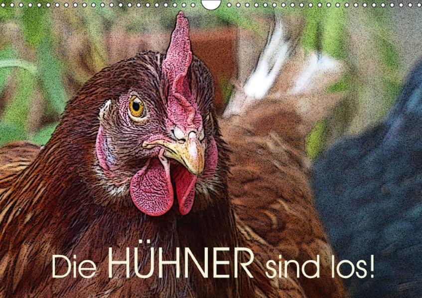 Die Hühner sind los! (Wandkalender 2017 DIN A3 quer) - Coverbild