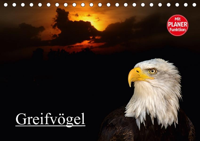 Greifvögel (Tischkalender 2017 DIN A5 quer) - Coverbild