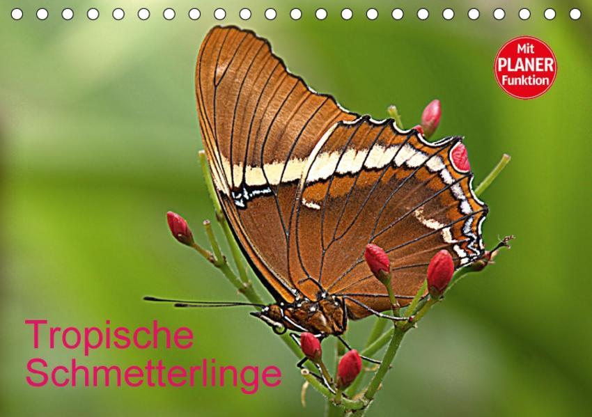 Tropische Schmetterlinge (Tischkalender 2017 DIN A5 quer) - Coverbild