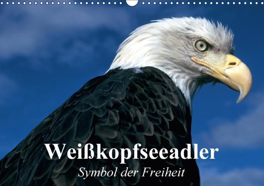 Weißkopfseeadler. Symbol der Freiheit (Wandkalender 2017 DIN A3 quer) - Coverbild