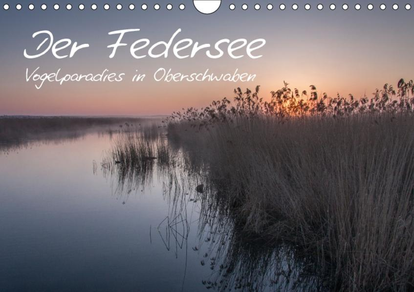 Der Federsee - Vogelparadies in Oberschwaben (Wandkalender 2017 DIN A4 quer) - Coverbild