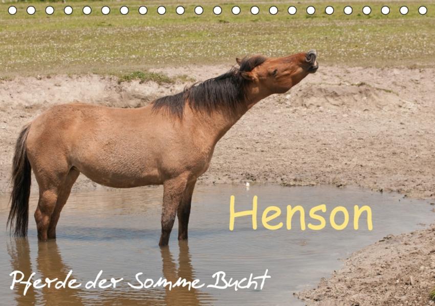 Henson - Pferde der Somme Bucht (Tischkalender 2017 DIN A5 quer) - Coverbild