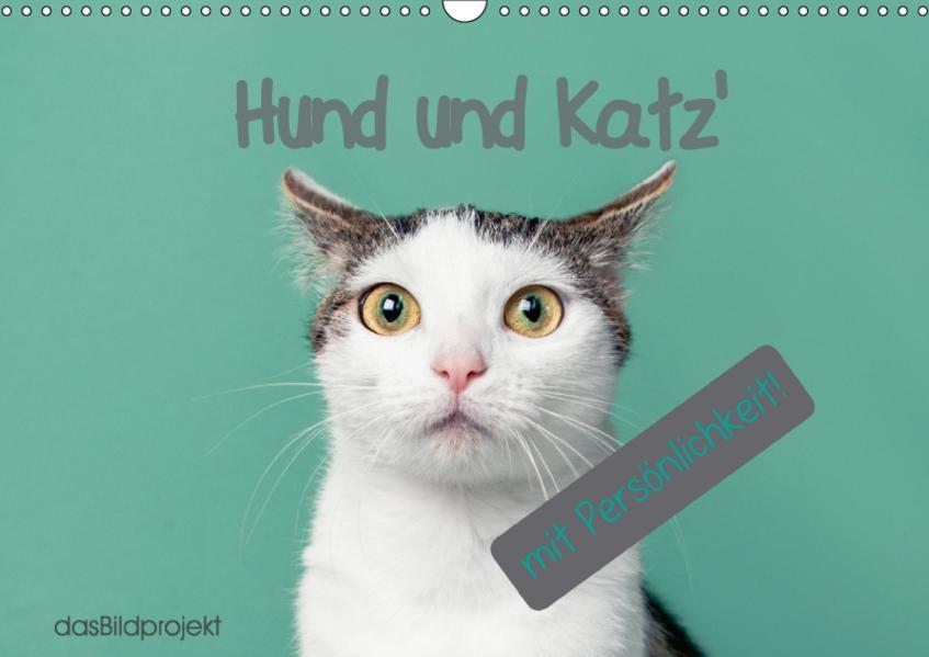 Katzen - dasBildprojekt (Wandkalender 2017 DIN A3 quer) - Coverbild