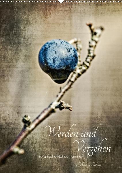 Werden und Vergehen (Wandkalender 2017 DIN A2 hoch) - Coverbild