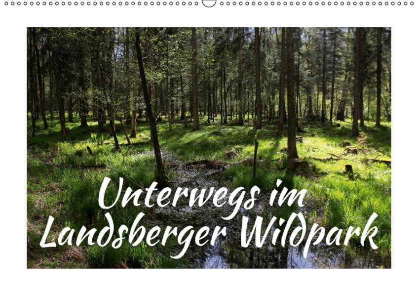 Unterwegs im Landsberger Wildpark (Wandkalender 2017 DIN A2 quer) - Coverbild