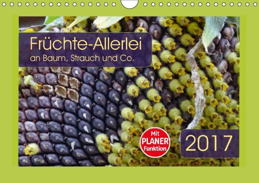 Früchte-Allerlei an Baum, Strauch und Co. (Wandkalender 2017 DIN A4 quer) - Coverbild