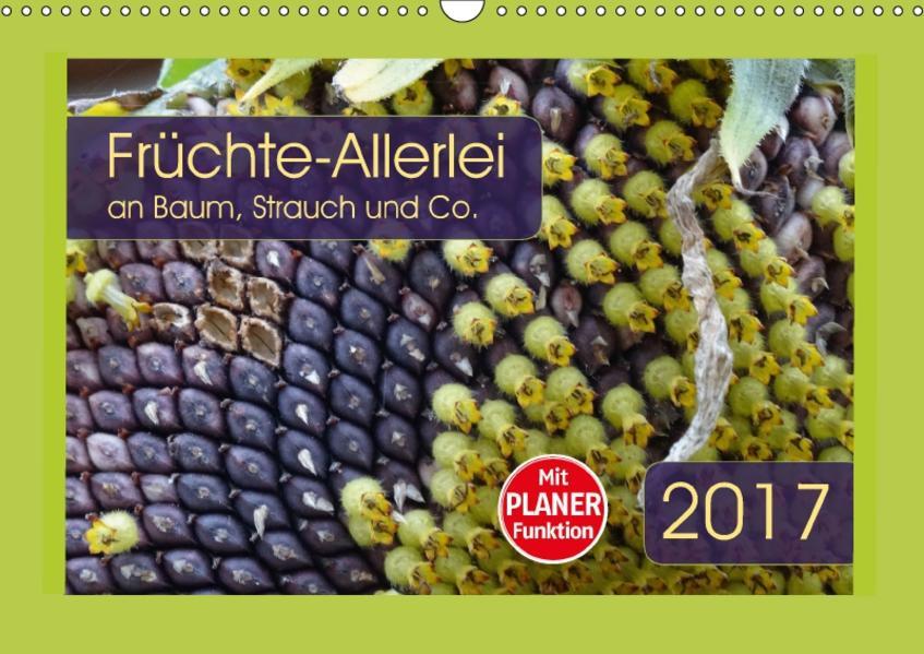 Früchte-Allerlei an Baum, Strauch und Co. (Wandkalender 2017 DIN A3 quer) - Coverbild