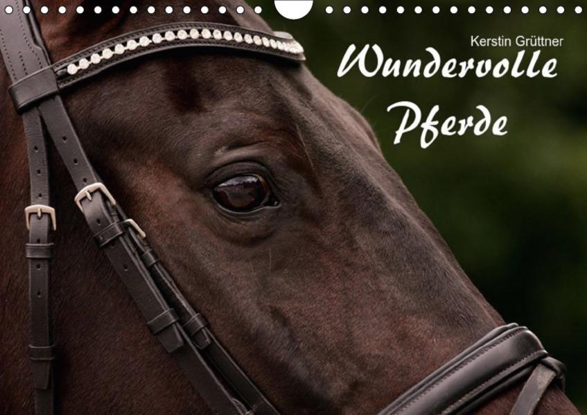 Wundervolle Pferde (Wandkalender 2017 DIN A4 quer) - Coverbild