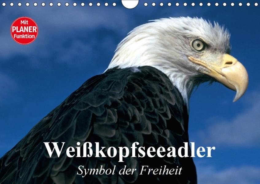 Weißkopfseeadler. Symbol der Freiheit (Wandkalender 2017 DIN A4 quer) - Coverbild
