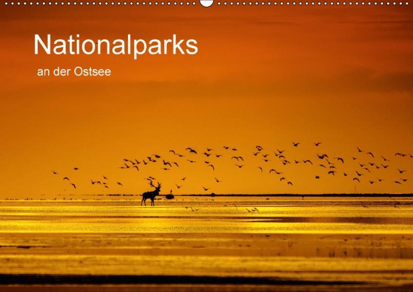 Nationalparks an der Ostsee (Wandkalender 2017 DIN A2 quer) - Coverbild