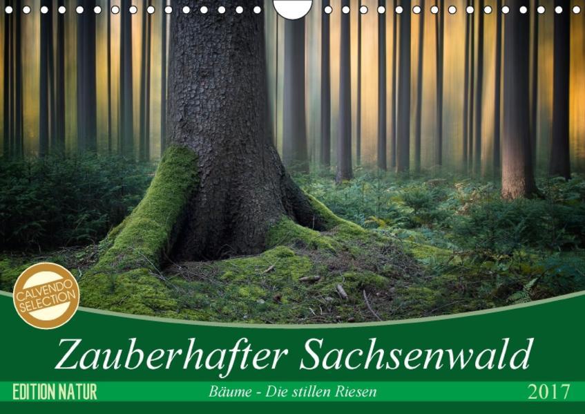 Zauberhafter Sachsenwald (Wandkalender 2017 DIN A4 quer) - Coverbild
