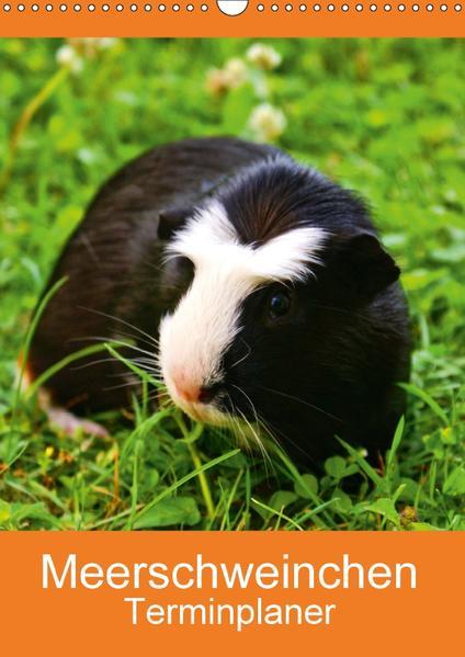 Meerschweinchen Terminplaner (Wandkalender 2017 DIN A3 hoch) - Coverbild