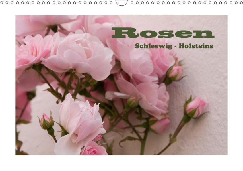 Rosen Schleswig-Holsteins (Wandkalender 2017 DIN A3 quer) - Coverbild