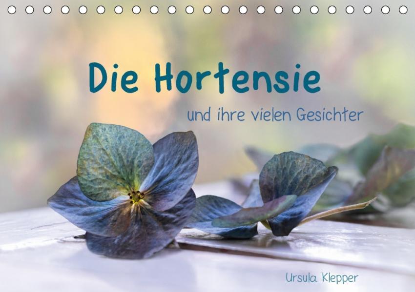 Die Hortensie und ihre vielen Gesichter (Tischkalender 2017 DIN A5 quer) - Coverbild