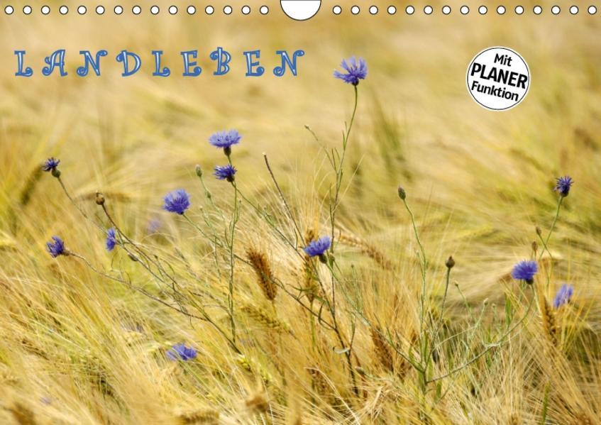 LANDLEBEN (Wandkalender 2017 DIN A4 quer) - Coverbild