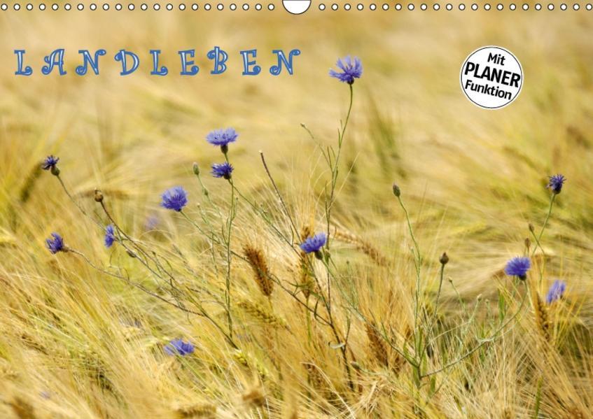 LANDLEBEN (Wandkalender 2017 DIN A3 quer) - Coverbild
