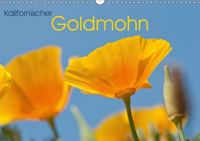 Kalifornischer Goldmohn (Wandkalender 2017 DIN A3 quer) - Coverbild