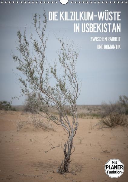 Die Kizilkum-Wüste in Usbekistan - Zwischen Rauheit und Romantik (Wandkalender 2017 DIN A3 hoch) - Coverbild