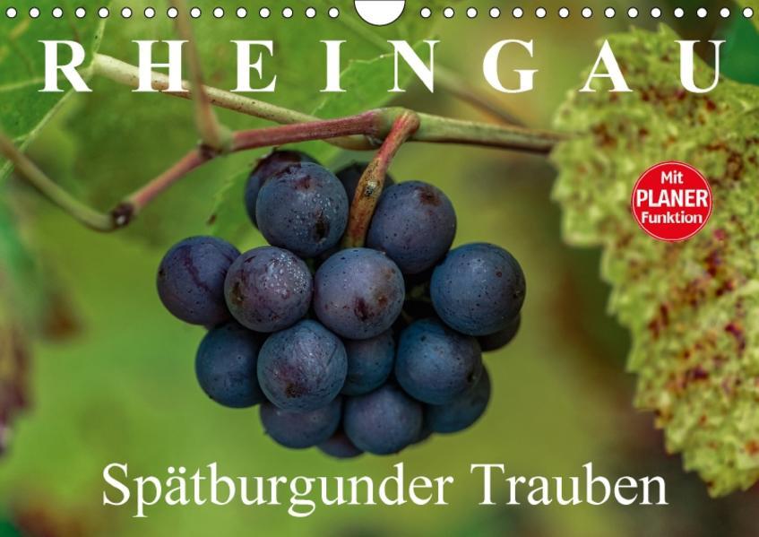 Rheingau - Spätburgunder Trauben (Wandkalender 2017 DIN A4 quer) - Coverbild