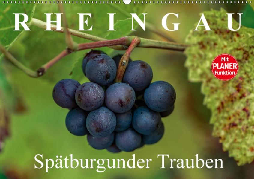 Rheingau - Spätburgunder Trauben (Wandkalender 2017 DIN A2 quer) - Coverbild