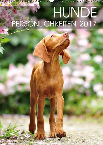 Hundepersönlichkeiten (Wandkalender 2017 DIN A2 hoch) - Coverbild
