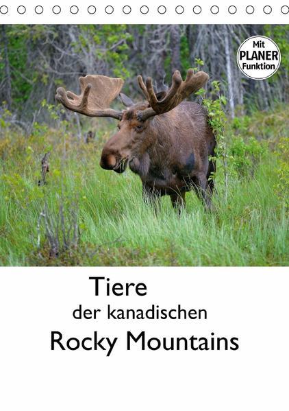 Tiere der kanadischen Rocky Mountains (Tischkalender 2017 DIN A5 hoch) - Coverbild