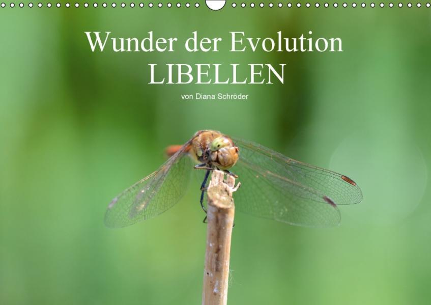 Wunder der Evolution Libellen (Wandkalender 2017 DIN A3 quer) - Coverbild
