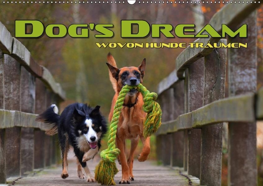 DOG'S DREAM - wovon Hunde träumen (Wandkalender 2017 DIN A2 quer) - Coverbild