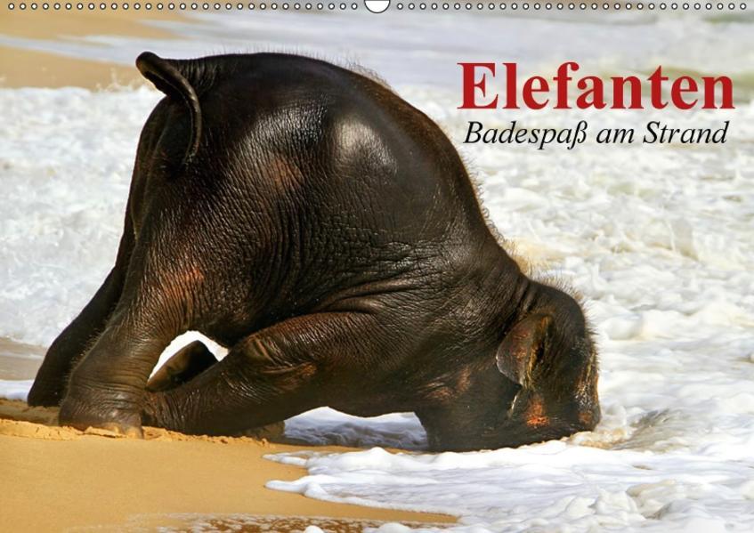 Elefanten. Badespaß am Strand (Wandkalender 2017 DIN A2 quer) - Coverbild