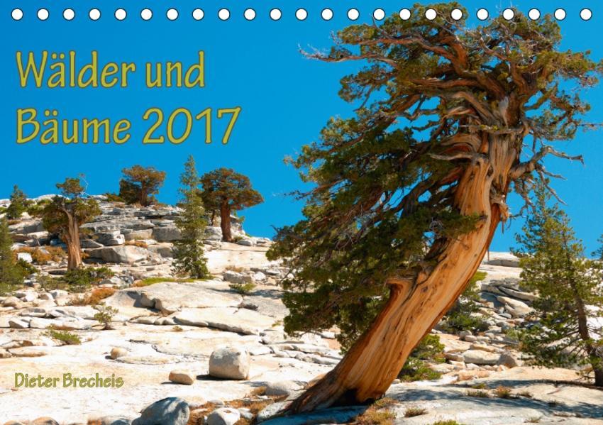 Wälder und Bäume 2017 (Tischkalender 2017 DIN A5 quer) - Coverbild