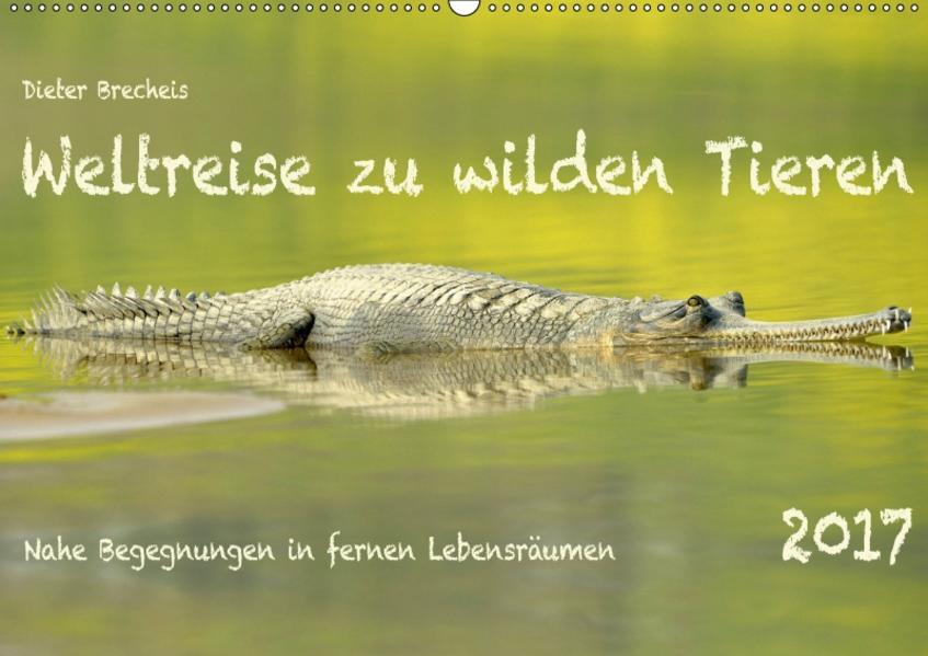 Weltreise zu wilden Tieren (Wandkalender 2017 DIN A2 quer) - Coverbild