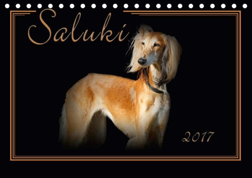 Saluki 2017 (Tischkalender 2017 DIN A5 quer) - Coverbild