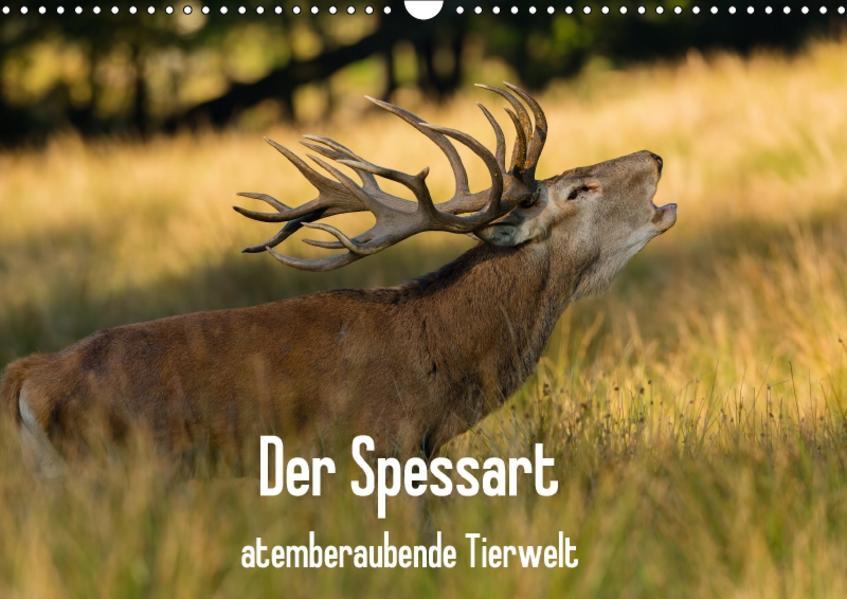 Der Spessart - atemberaubende Tierwelt (Wandkalender 2017 DIN A3 quer) - Coverbild