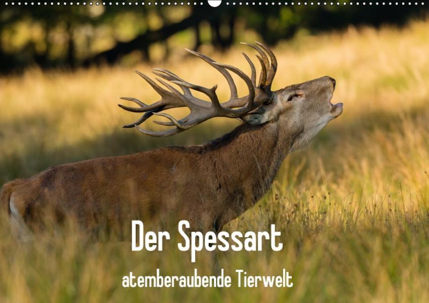 Der Spessart - atemberaubende Tierwelt (Wandkalender 2017 DIN A2 quer) - Coverbild