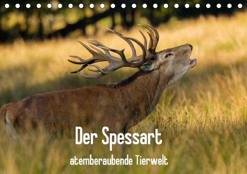 Der Spessart - atemberaubende Tierwelt (Tischkalender 2017 DIN A5 quer) - Coverbild