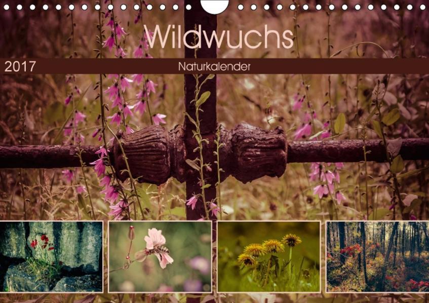 Wildwuchs 2017 (Wandkalender 2017 DIN A4 quer) - Coverbild