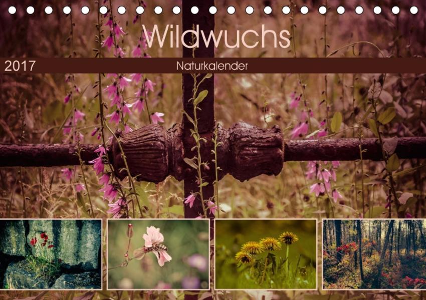 Wildwuchs 2017 (Tischkalender 2017 DIN A5 quer) - Coverbild