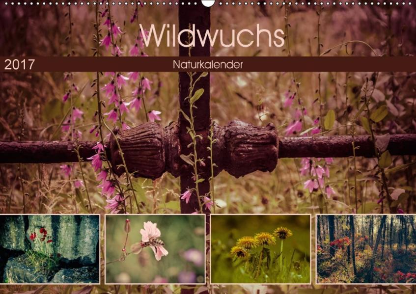 Wildwuchs 2017 (Wandkalender 2017 DIN A2 quer) - Coverbild