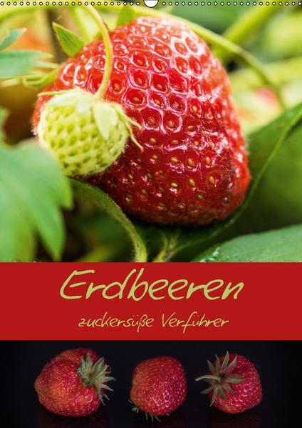 Erdbeeren - zuckersüße Verführer (Wandkalender 2017 DIN A2 hoch) - Coverbild