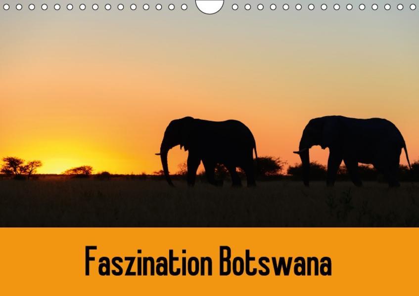 Faszination Botswana (Wandkalender 2017 DIN A4 quer) - Coverbild
