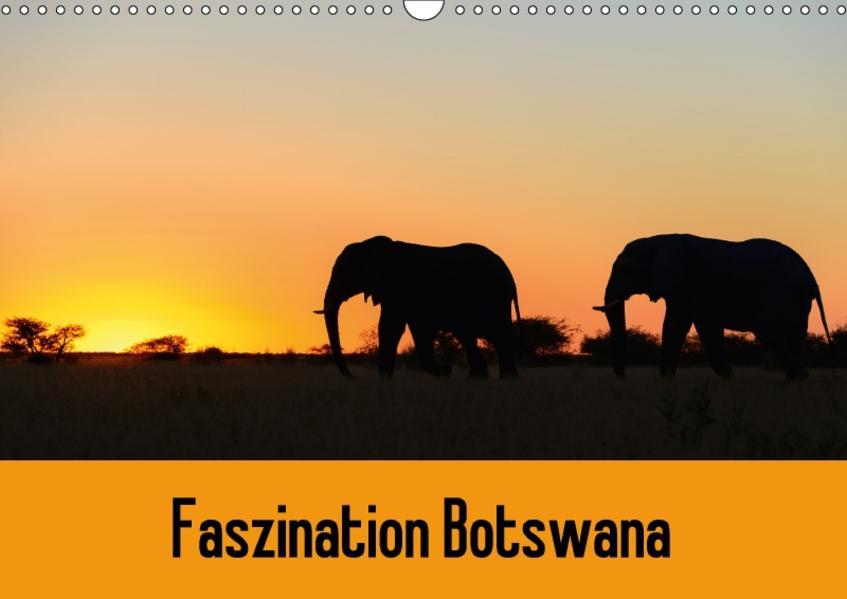 Faszination Botswana (Wandkalender 2017 DIN A3 quer) - Coverbild
