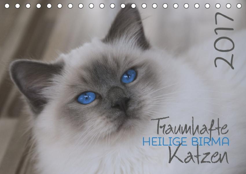 Traumhafte Heilige Birma Katzen (Tischkalender 2017 DIN A5 quer) - Coverbild
