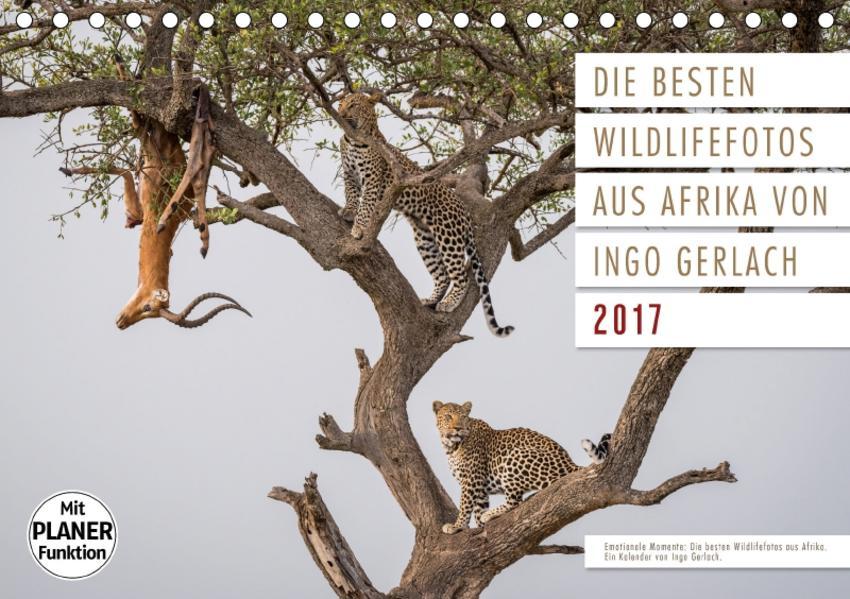 Emotionale Momente: Die besten  Wildlifefotos aus Afrika. (Tischkalender 2017 DIN A5 quer) - Coverbild