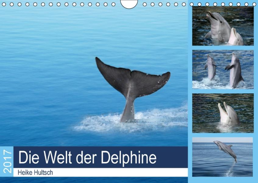 Die Welt der Delphine (Wandkalender 2017 DIN A4 quer) - Coverbild