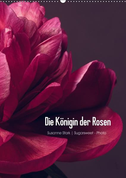 Die Königin der Rosen (Wandkalender 2017 DIN A2 hoch) - Coverbild