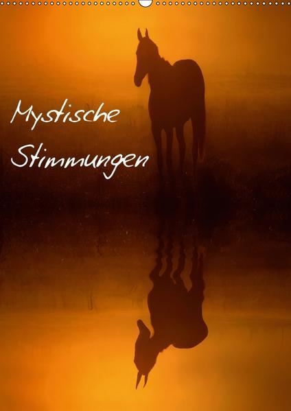 Mystische Stimmungen (Wandkalender 2017 DIN A2 hoch) - Coverbild