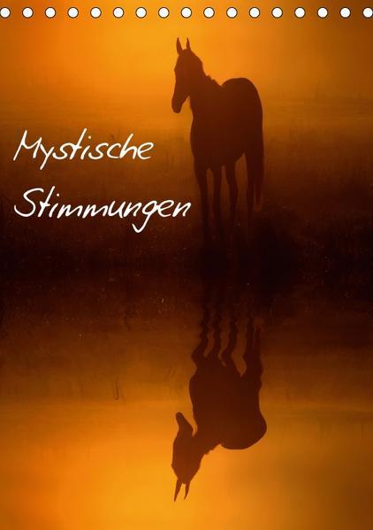 Mystische Stimmungen (Tischkalender 2017 DIN A5 hoch) - Coverbild